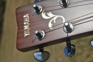 Yamaha_FGX04_Acoustic_headstock_(2011-11-19_12.06.24_by_Loco_Steve)
