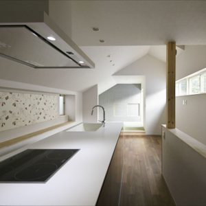 ダブルエントランスを持つ変形敷地の狭小住宅